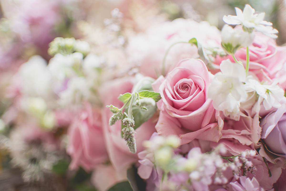 monalto carriage rooms wedding photography tc photography belfast zoe chris 23